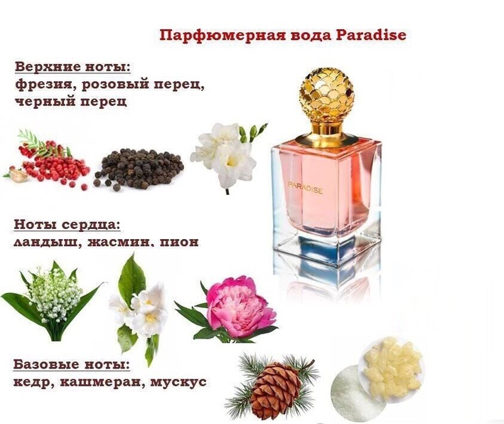 ноты аромата Paradise