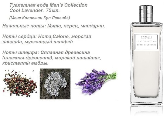 ноты Men's Collection Cool Lavender