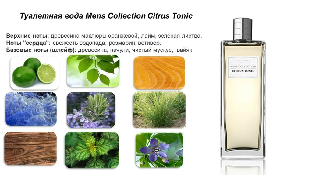 ноты Men's Collection Citrus Tonic