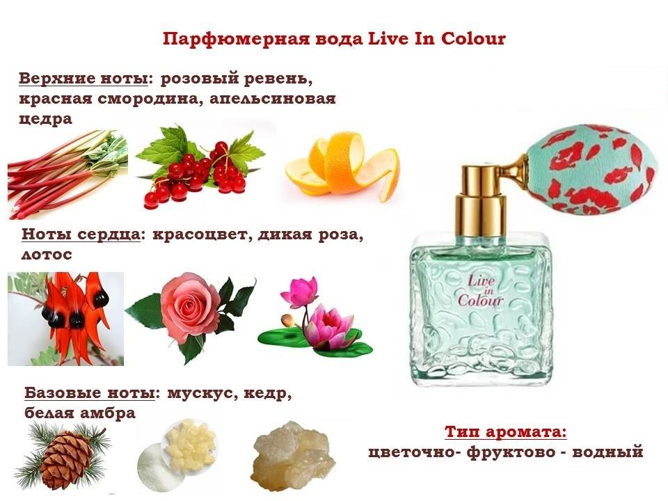 ноты аромата Live In Colour