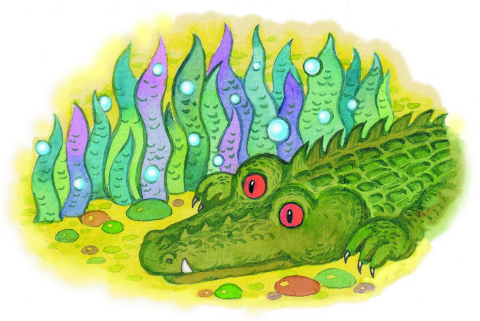 Крокодил возле водорослей