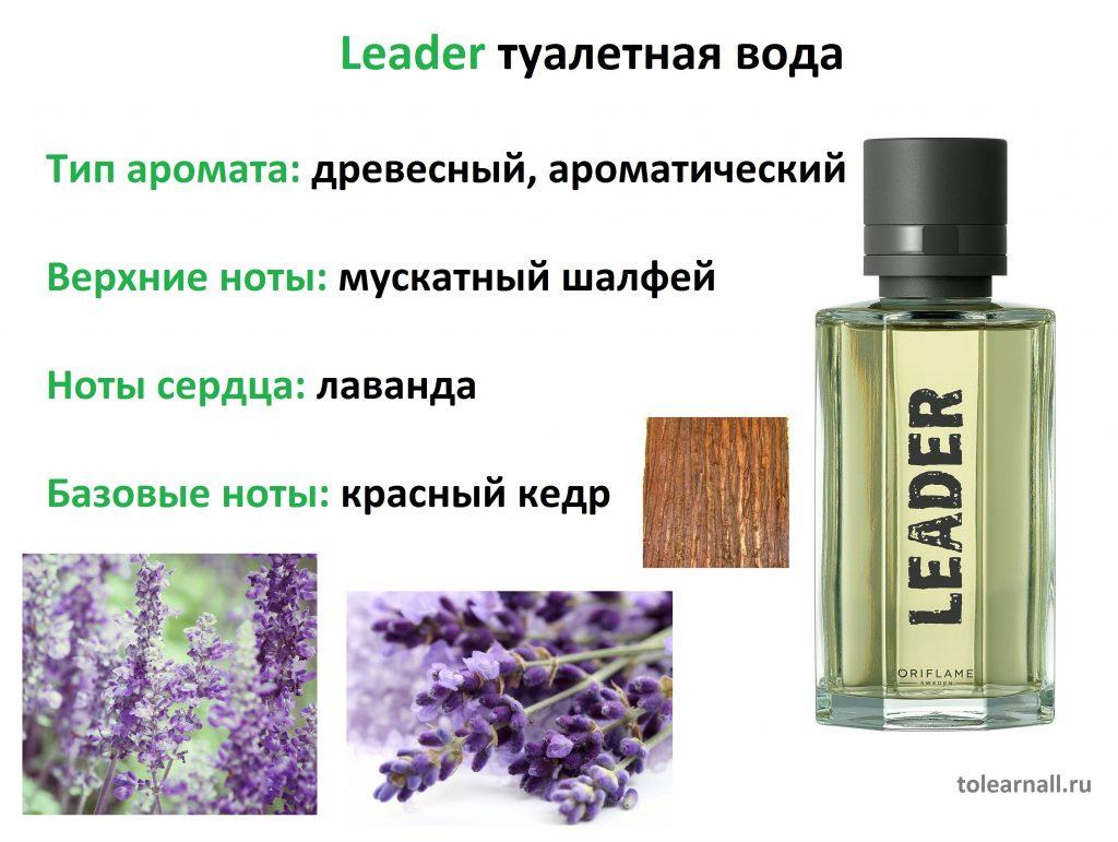 Leader Лидер ноты аромата