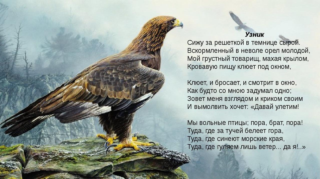 Александр Пушкин Узник картинка к стихотворению поэта