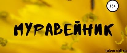 Обложка книги Муравейник Ольга Чепишко