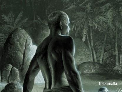 Обложка книги Корм. Книга 1 Артём Каменистый