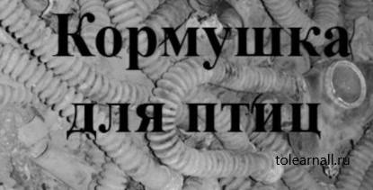 Обложка книги Виктор Геннадьевич Бурмистров Кормушка для птиц