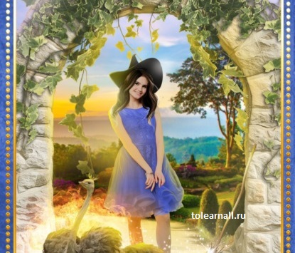 Обложка книги Невеста ищет дракона Ольга Пашнина