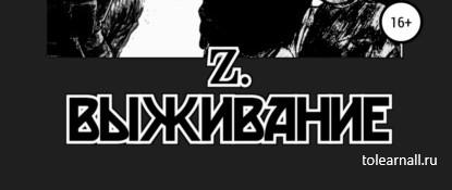 Обложка книги Вячеслав Владимирович Панов Z. Выживание
