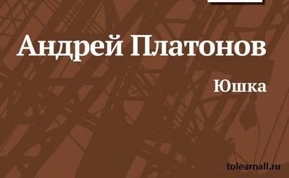 Обложка книги Юшка Андрей Платонов