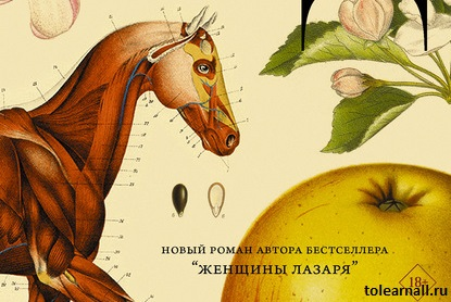 Обложка книги Сад Марина Степнова