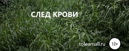Обложка книги Александр Анатольевич Романов След крови