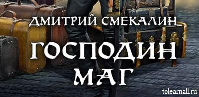 Обложка книги Господин маг Дмитрий Смекалин