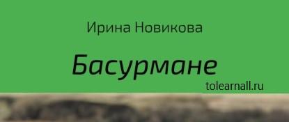 Обложка книги Ирина Юрьевна Новикова Басурмане