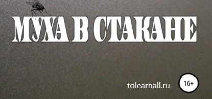 Обложка книги Николай Лебедев Муха в стакане