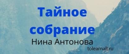 Обложка книги Нина Антонова Тайное собрание