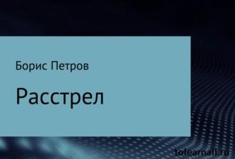 Обложка книги Расстрел Борис Борисович Петров