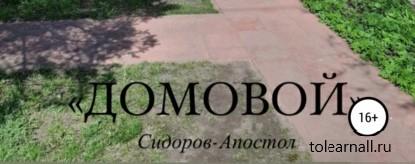Обложка книги Сидоров-Апостол Домовой