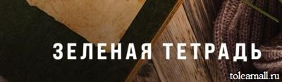 Обложка книги Зелёная тетрадь Олег Рой