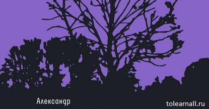 Обложка книги Ложится мгла на старые ступени Александр Чудаков